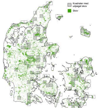 Fordelingen af de udpegede områder til bevarelse af biodiversitet i løvskov. I hvert kvadrat er det antaget, at 80 % af løvskoven fritages for skovdrift. Kreditering: Petersen m.fl. (2016)